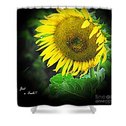 Just A Smile  Shower Curtain