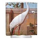 kb Marks Henry-Indian Crane Bullfinch and Thrush Henry Stacy Marks Shower Curtain