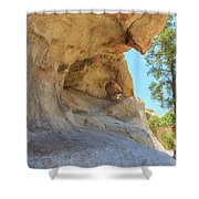 Landscape In Joshua Tree National Park Shower Curtain