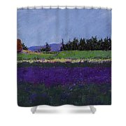 Lavender Farm Shower Curtain