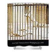 Lion Cage, Carnivore House, Philadelphia Zoo, C. 1900 Shower Curtain