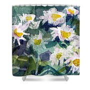 Little Asters Shower Curtain
