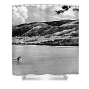 Loch Ness Monster, 1934 Shower Curtain
