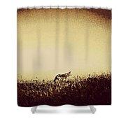 Lone Wolf Shower Curtain
