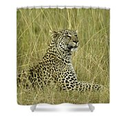 Lovely Leopard Shower Curtain