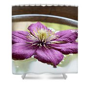 Clematis Flower On Water Shower Curtain