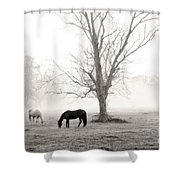 Magical Morning Shower Curtain