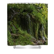 Malanaphy Springs Shower Curtain
