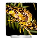 Marbled Wood Frog Shower Curtain