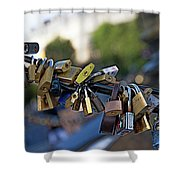 Monument To Diana In Paris Shower Curtain