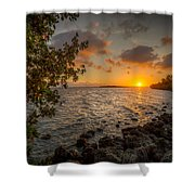 Morning At The Mangroves Shower Curtain