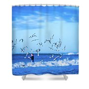 Morning Sunrise Over Ocean Waters Shower Curtain