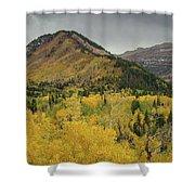 Mount Timpanogos Fall Colors Shower Curtain