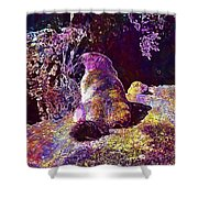 Mountain Marmot Wildlife Animals  Shower Curtain