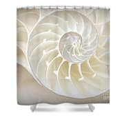 Nautilus 3by4 Shower Curtain