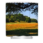 Ncdot Wildflowers Shower Curtain