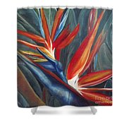 2 Of A Kind Shower Curtain