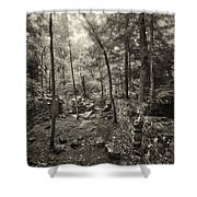 Old Stone Fort Shower Curtain