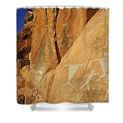 Olowalu Petroglyphs Shower Curtain