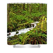 Olympic Tranquility Shower Curtain