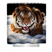 Open Wide Shower Curtain