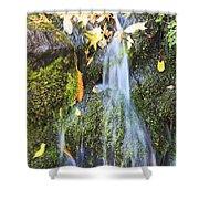 Oregon Cascades, Oregon, Usa Shower Curtain