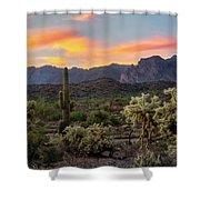Pastel Desert Skies  Shower Curtain