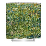 Patch Of Grass Shower Curtain