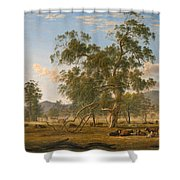 Patterdale Landscape With Cattle Shower Curtain