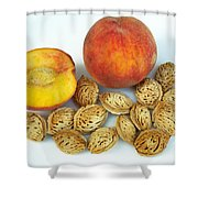 Peaches And Pits Shower Curtain