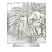 Pencil Sketch Shower Curtain