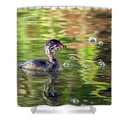 Pied-billed Grebe Bubbles Shower Curtain