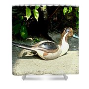Pintail Shower Curtain