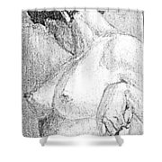 Pinups Shower Curtain
