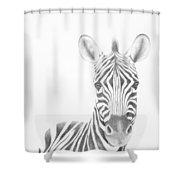 Plains Zebra Shower Curtain