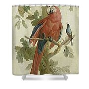 Plants And Animals Shower Curtain
