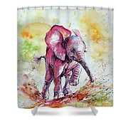 Playing Elephant Baby Shower Curtain