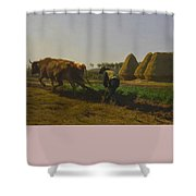 Cattle At Rest On A Hillside In The Alps Shower Curtain