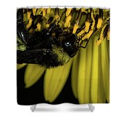Pollen Collector 3 Shower Curtain