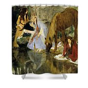 Portrait Of Mlle Fiocre In The Ballet  Shower Curtain
