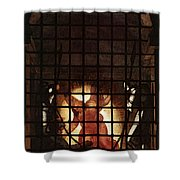 Raphael The Liberation Of St Peter  Shower Curtain
