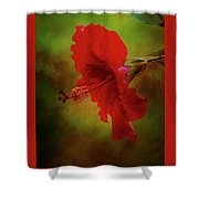Red Hibiscus Art Shower Curtain