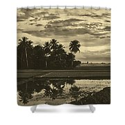 Rice Field Sunrise - Indonesia Shower Curtain
