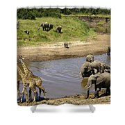River Crossing Shower Curtain
