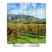 Rows Of Grapevines In Napa Valley Caliofnia Shower Curtain