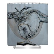 Sacred Owl Shower Curtain