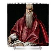 Saint Jerome As Scholar Shower Curtain