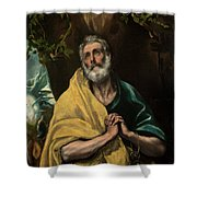 Saint Peter In Tears Shower Curtain