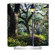Savannah Spring Perspective Shower Curtain