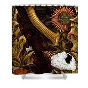 Sea Anemones, 1860 Shower Curtain